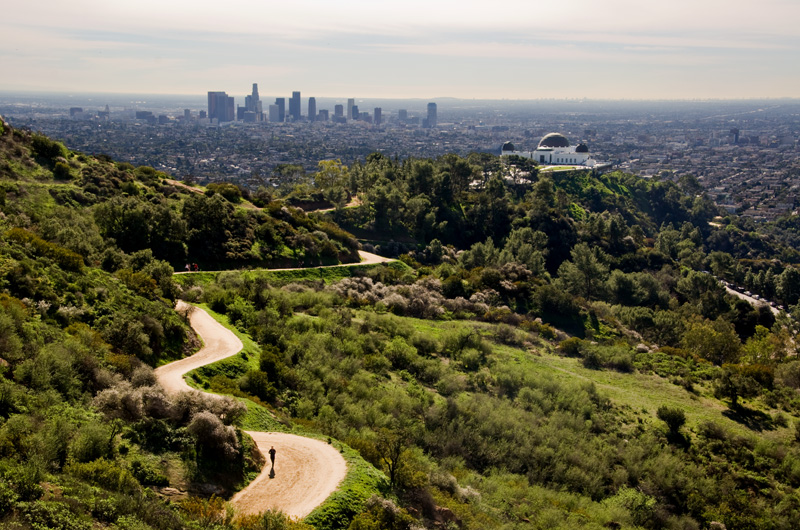 griffith park hollywood