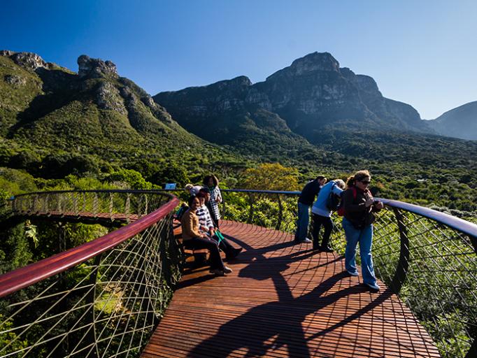 kirstenbosch national botanical garden cape town south africa